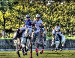 Campeonato Nacional de Polo Femenino