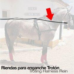 Enganche Riendas Trotón Negro Zaldi