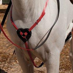 Pechopetral Biotane Raid y Horseball Rojo
