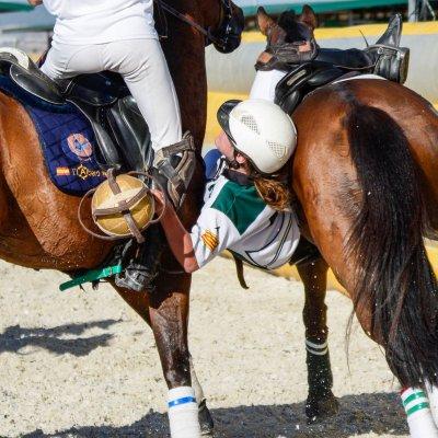 Patrocinador Oficial de Horseball España