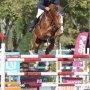 Campeonatos de España de caballos jóvenes y de productos nacionales